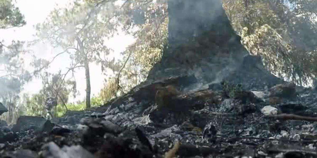 Crews mop up suburban West Palm Beach fire