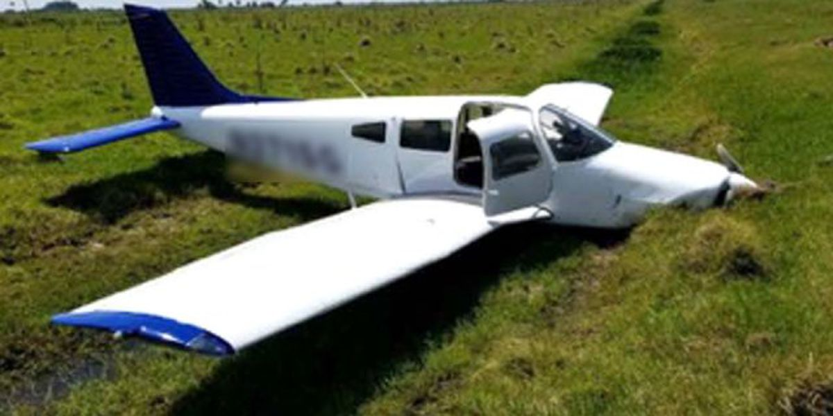 2 survive after small plane crashes into Florida cow pasture
