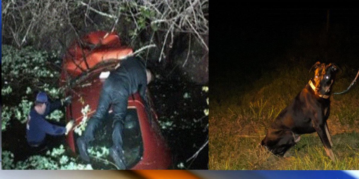 First responders save woman, dog from canal in Martin County