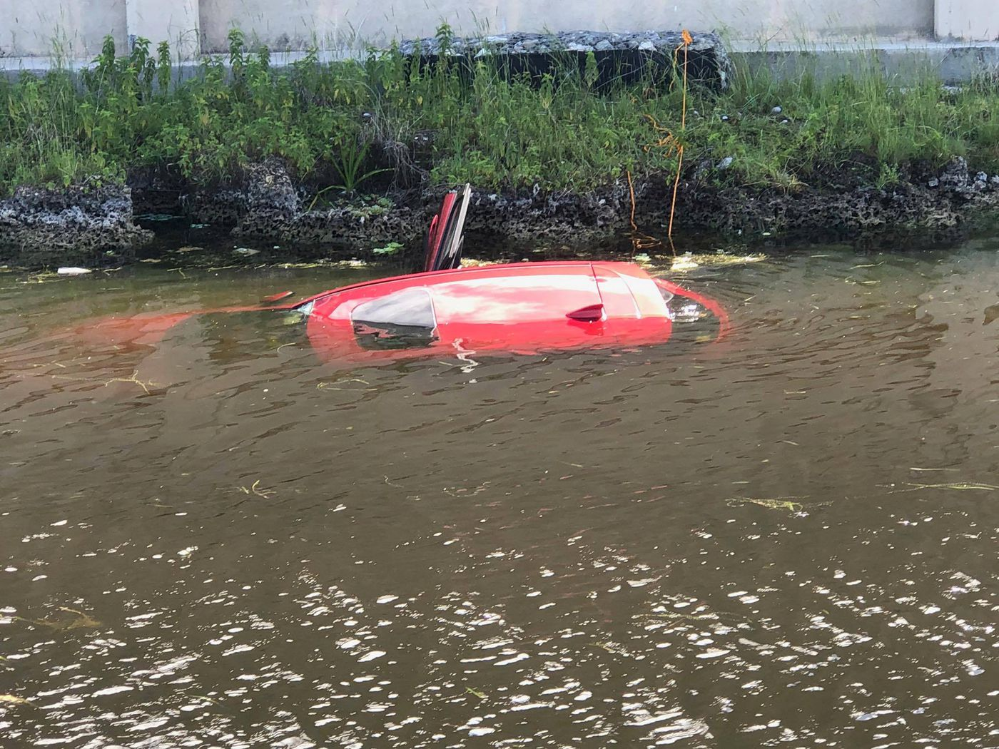 Deputies rescue woman from drowning in sinking car