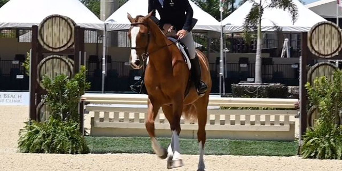U.S. dressage team to compete in Wellington