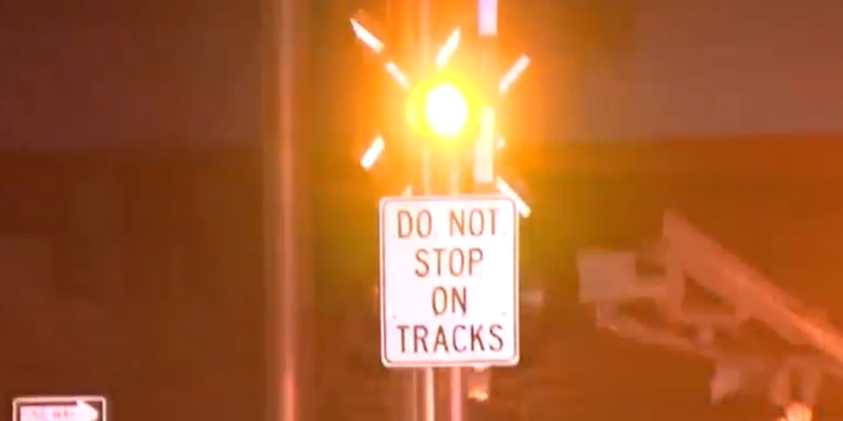 Pedestrian hit, killed by Tri-Rail train