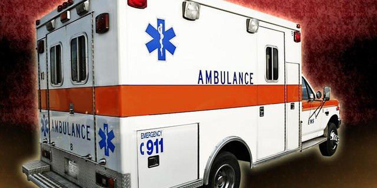 Deer sent airborne by passing car kills woman