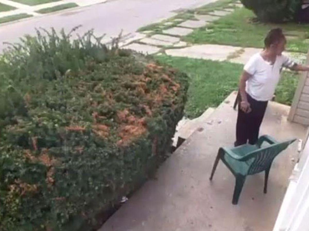 Woman rubs feces on neighbors' door in retaliation for dog pooping in yard