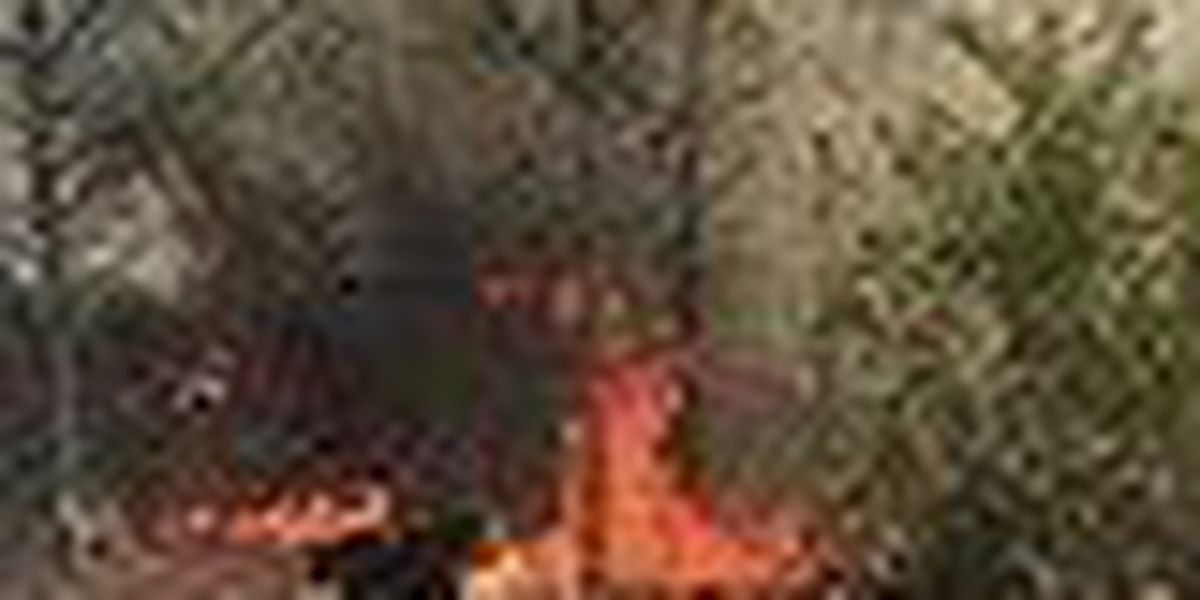 Brush fire threatens homes in St. Lucie County