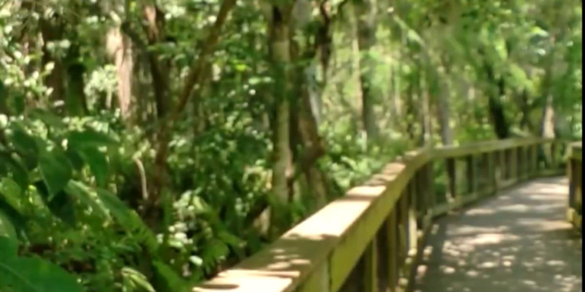 Wildlife refuge looks at additional uses