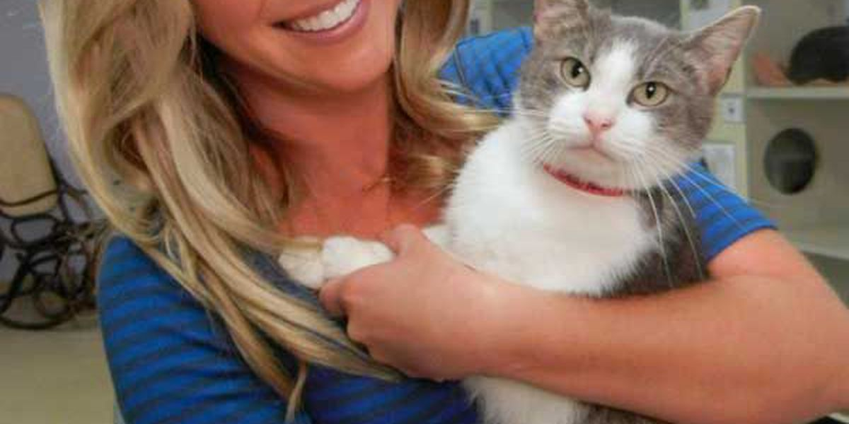 Adopted! Pet of the Week Pebbles