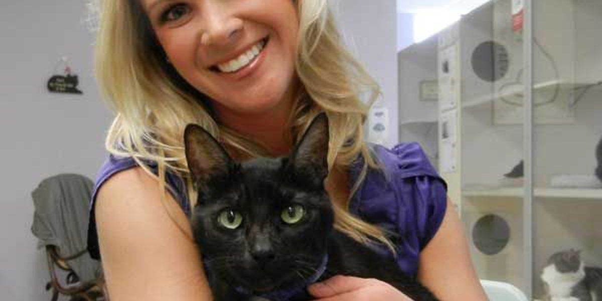 Adopted! Pet of the Week Bubbles