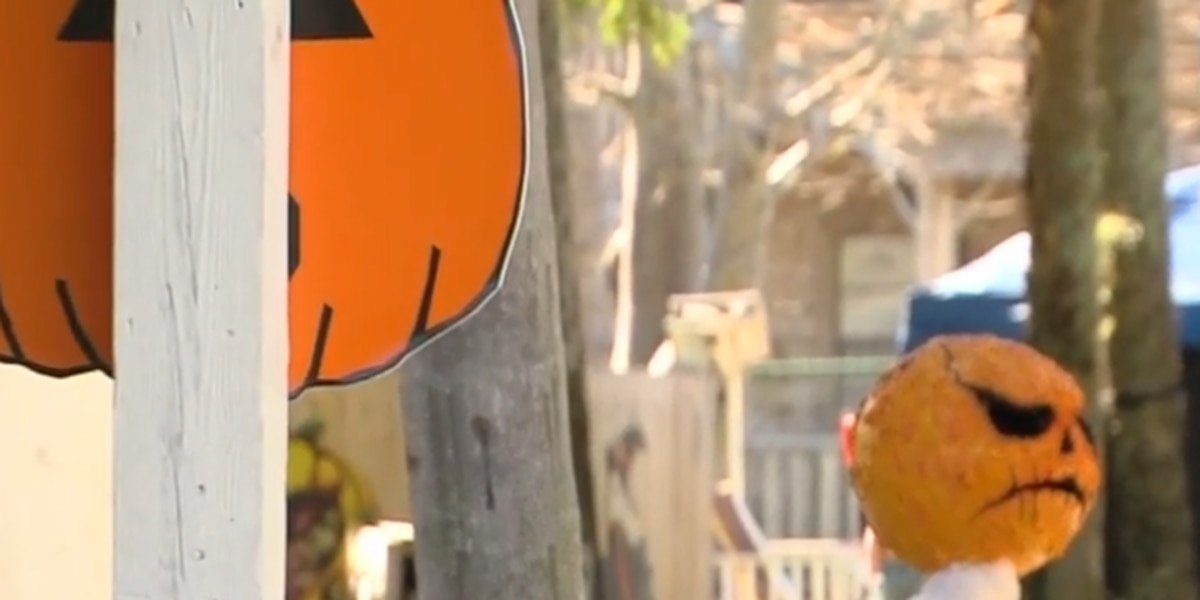 Safe and fun alternatives for trick-or-treating