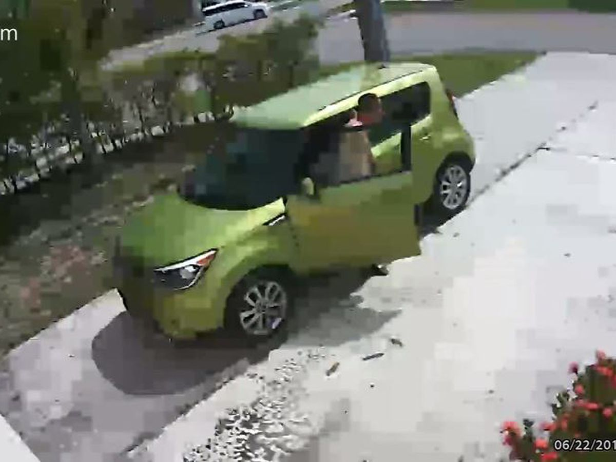 Caught on camera: Man takes off shirt, poops in Fla. driveway