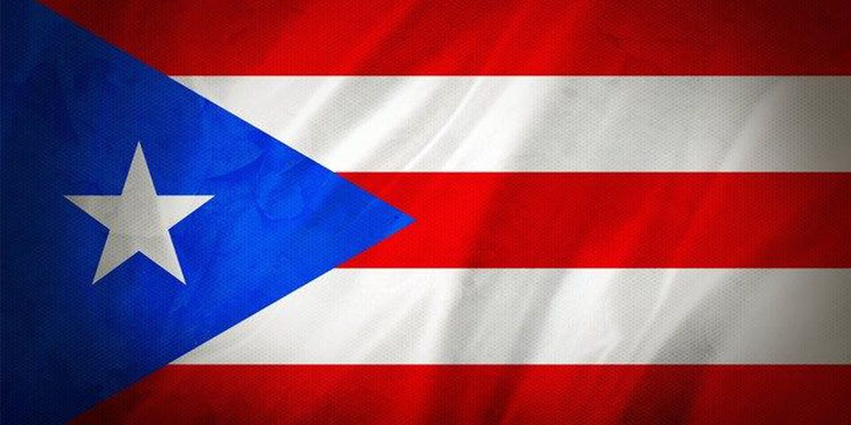 Puerto Rico likely to cut services or default by year's end