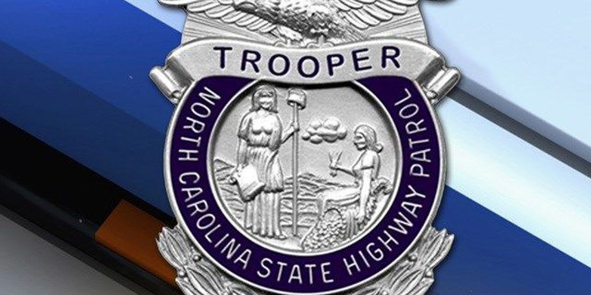Trooper shoots, wounds driver reversing into him