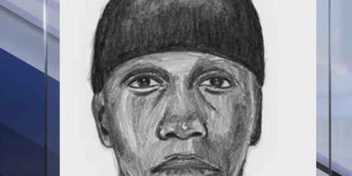 Sketch released of Lake Worth carjacking suspect