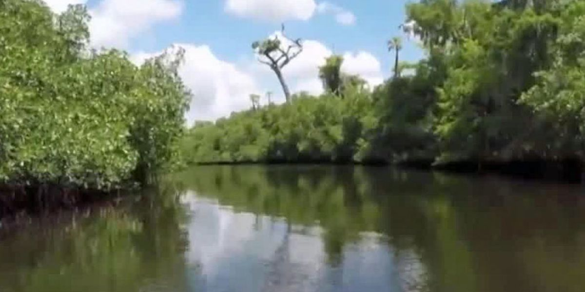 Efforts underway to restore the Loxahatchee River