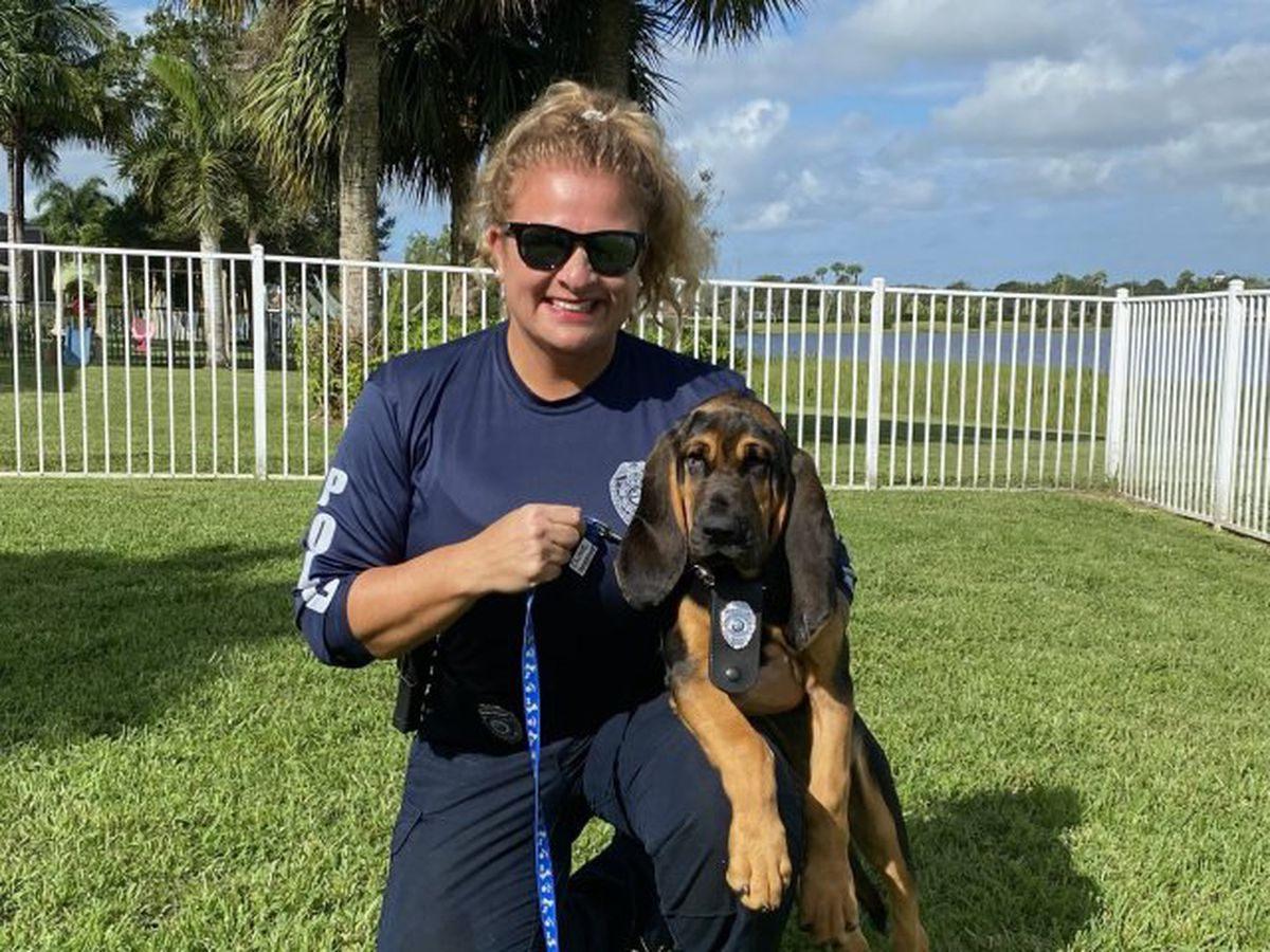 New K9 joins West Palm Beach police department
