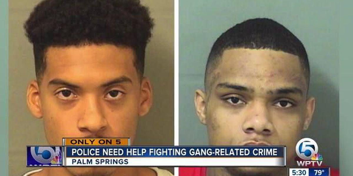 Palm Springs Police crack down on dangerous gang