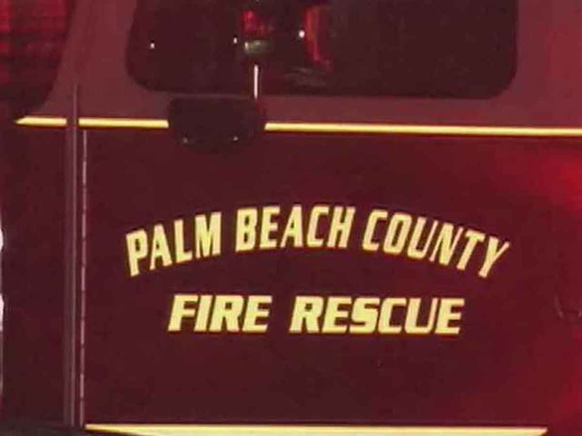 Two dogs, one cat rescued from house fire in Juno Beach