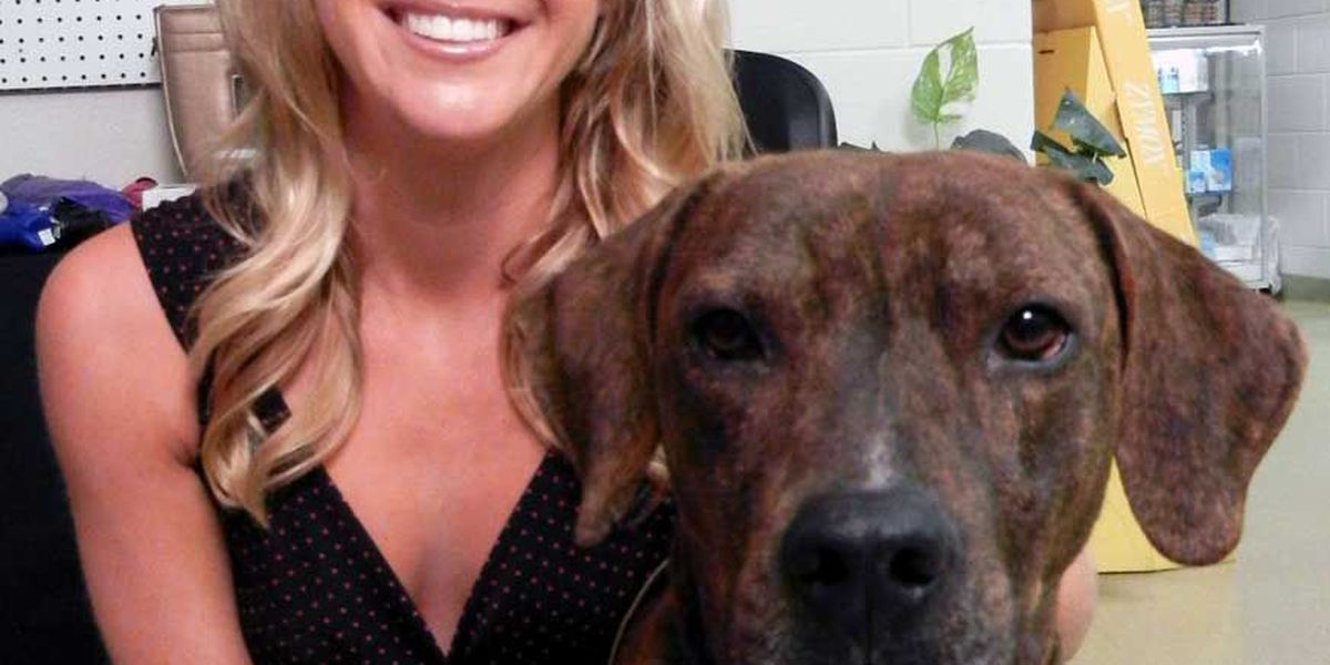 Adopted! Pet of the Week Woody