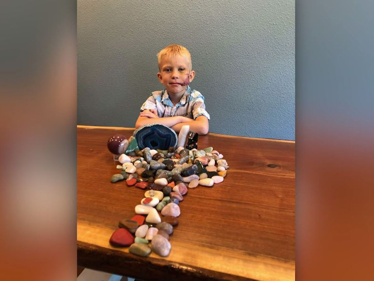 Boy, 6, mauled while protecting younger sister from dog attack in Wyoming