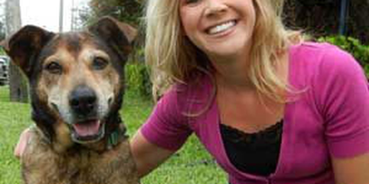 Adopted! Pet of the Week Maggie May