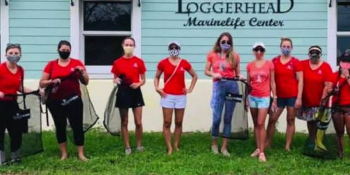 Junior League of the Palm Beaches commemorates 'Day of Impact'
