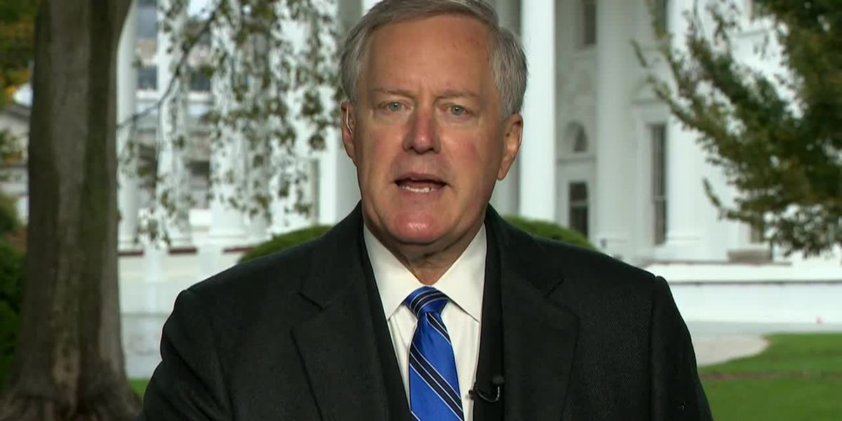 Meadows: 'We're not going to control the pandemic'