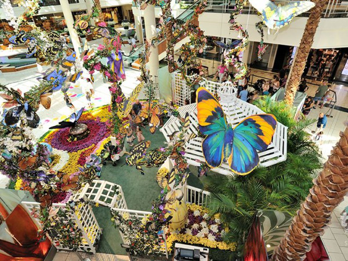 The Gardens Mall Reopening On May 15