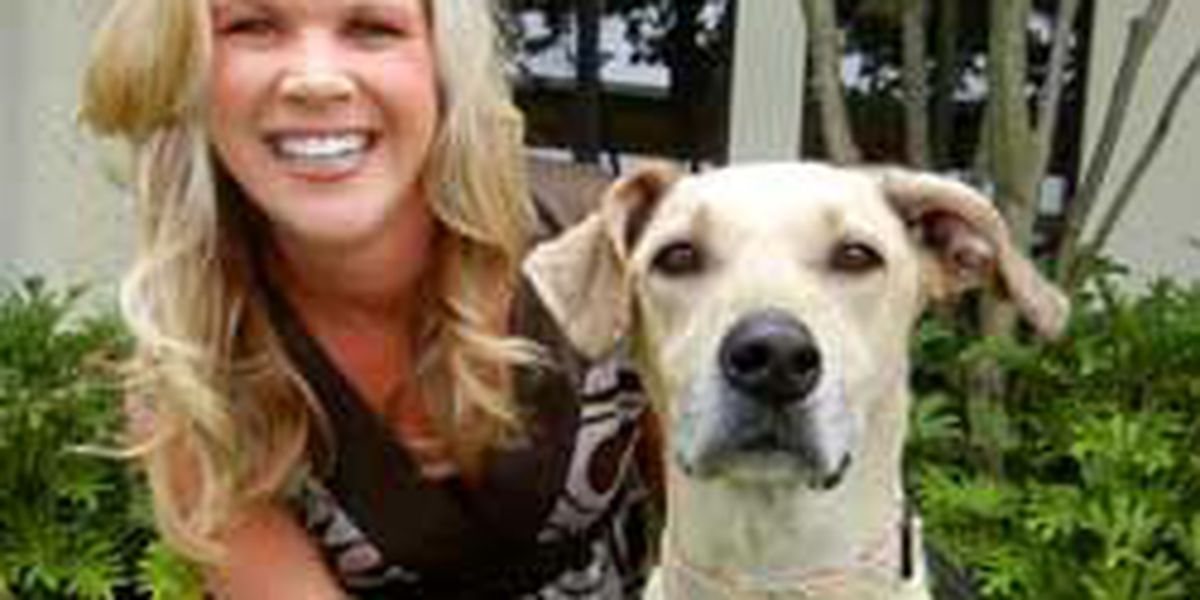 Adopted! Pet of the Week Aspen