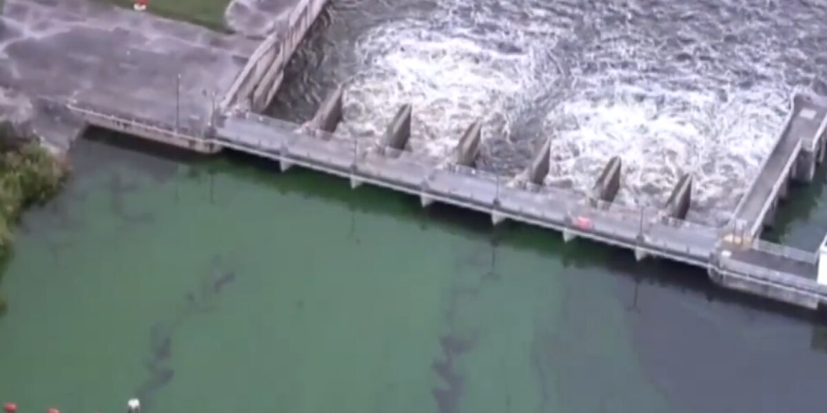 State task force begins blue-green algae work