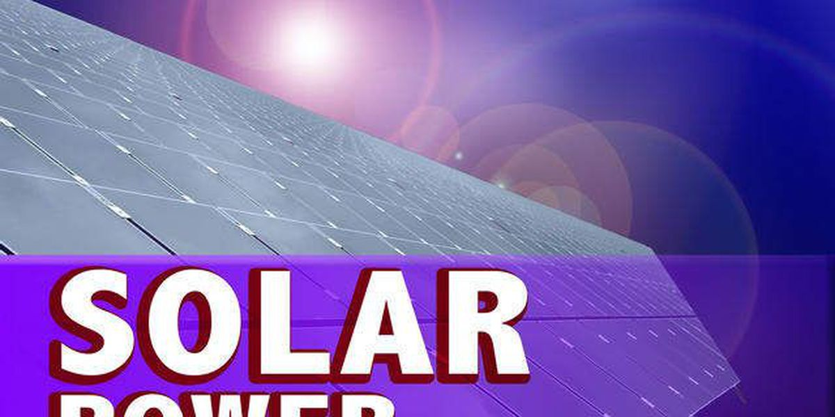 Florida court narrowly approves solar amendment for ballot
