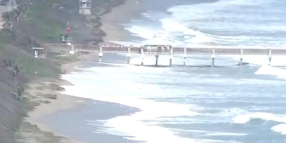 Beachgoers stunned by large waves