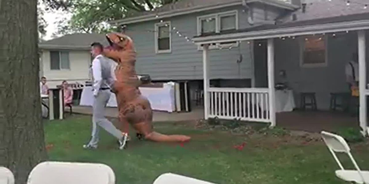 T. rex bridesmaid