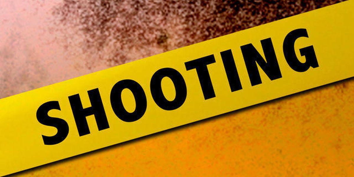 Deputies investigating shooting near Greenacres