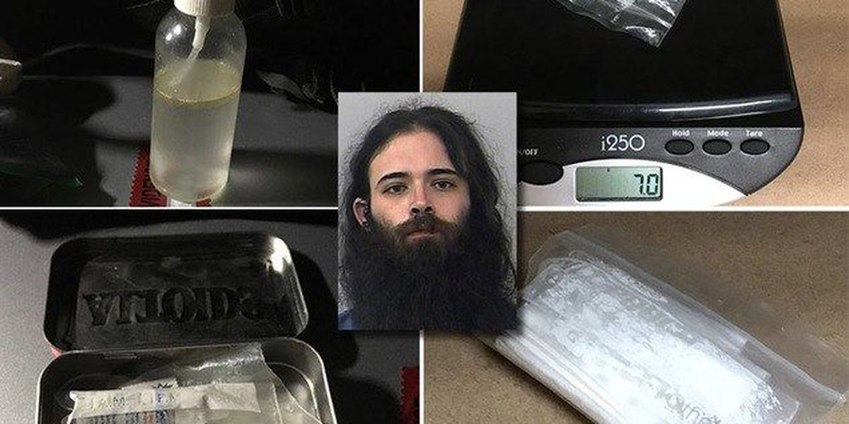 Man on his way to Okeechobee Music Fest arrested on burglary, LSD, cocaine, other charges