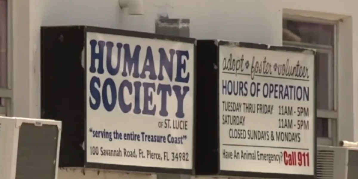 Commissioners vote not to renew contract with embattled Humane Society of St. Lucie County