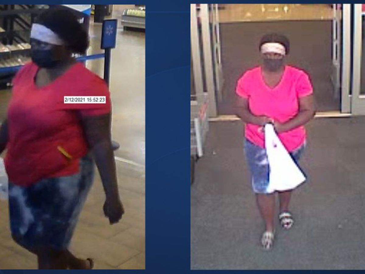 Woman accused of using stolen credit cards in Lake Park