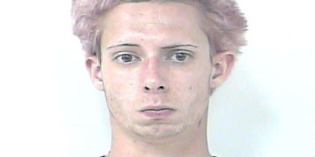 Port St. Lucie man charged in car burglary spree
