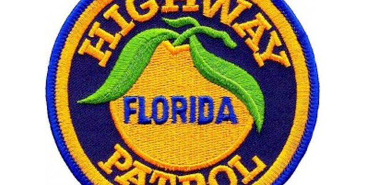 Small plane makes emergency landing on Sawgrass Expressway