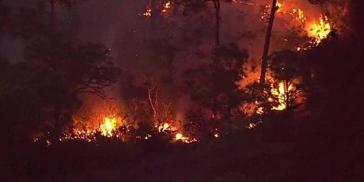 Here's how to protect your home from wildfires