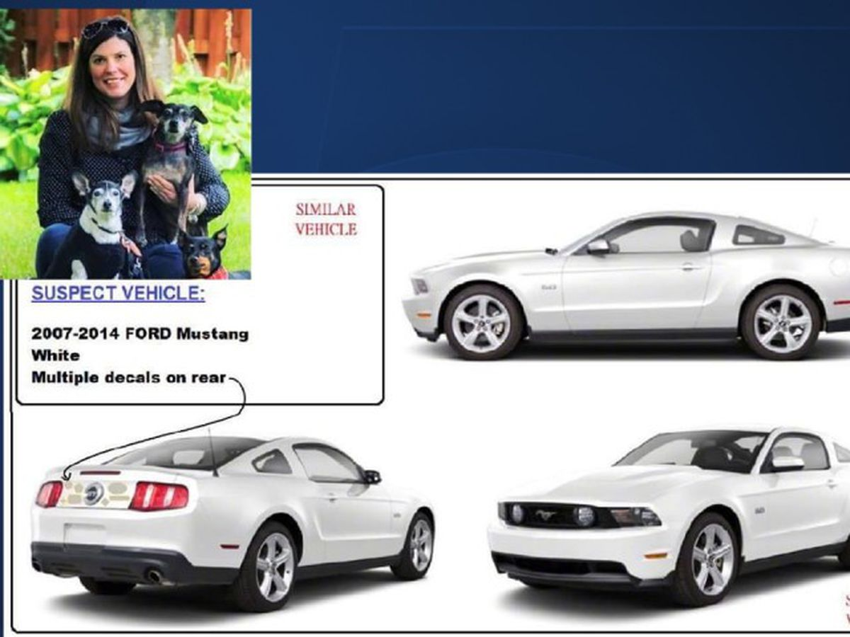 Fort Lauderdale police seek information on a hit-and-run crash