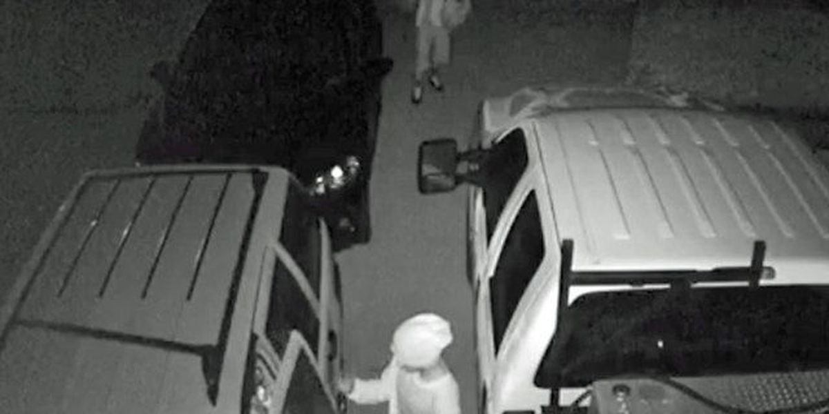 Car burglars strike Port St. Lucie neighborhood