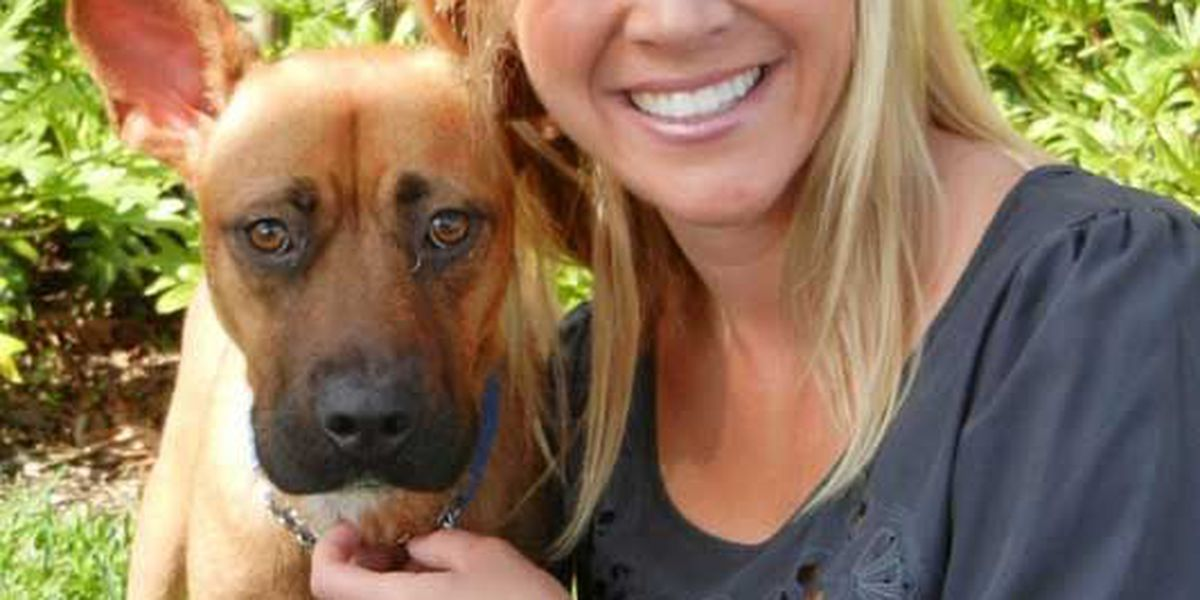Adopted! Pet of the Week Mama Mia