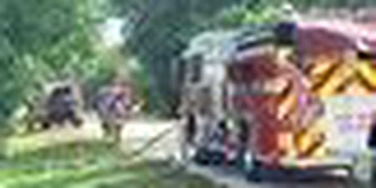 Brush fire in Jupiter Farms contained Friday