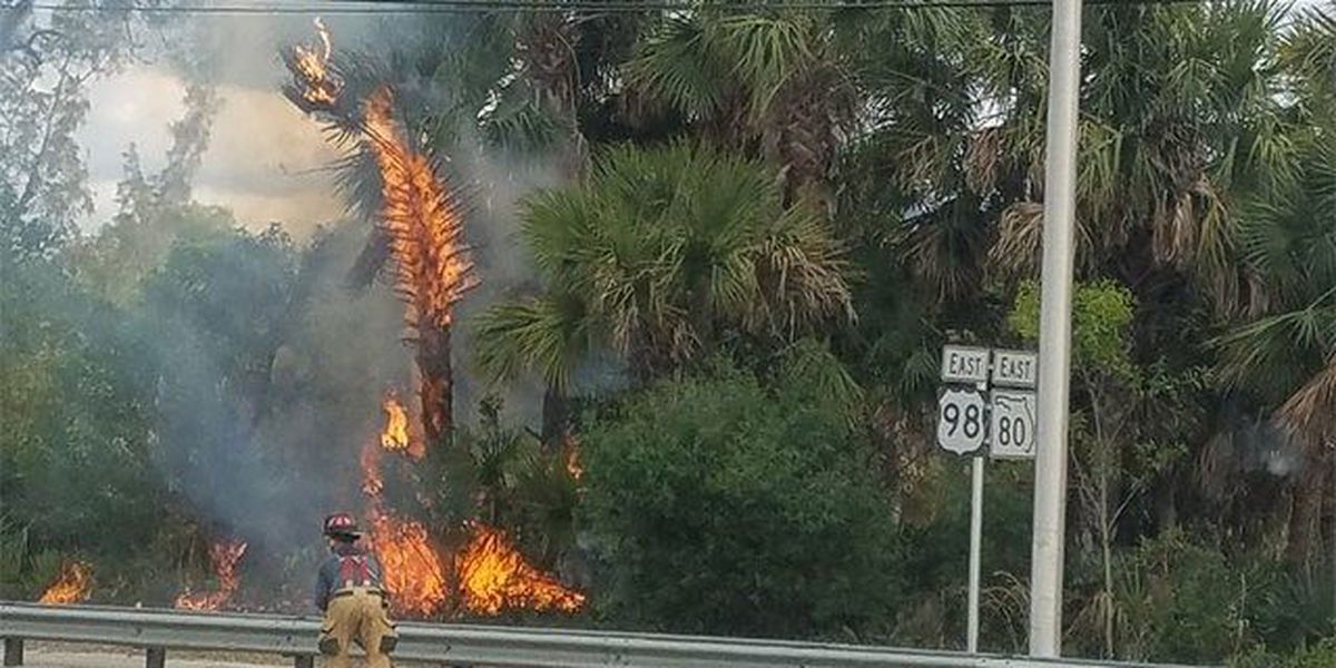 West Palm Beach brush fire extinguished