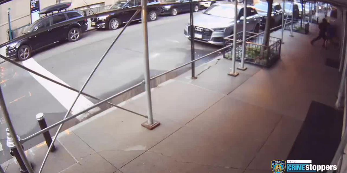 Video: Rick Moranis sucker punched while walking in NYC