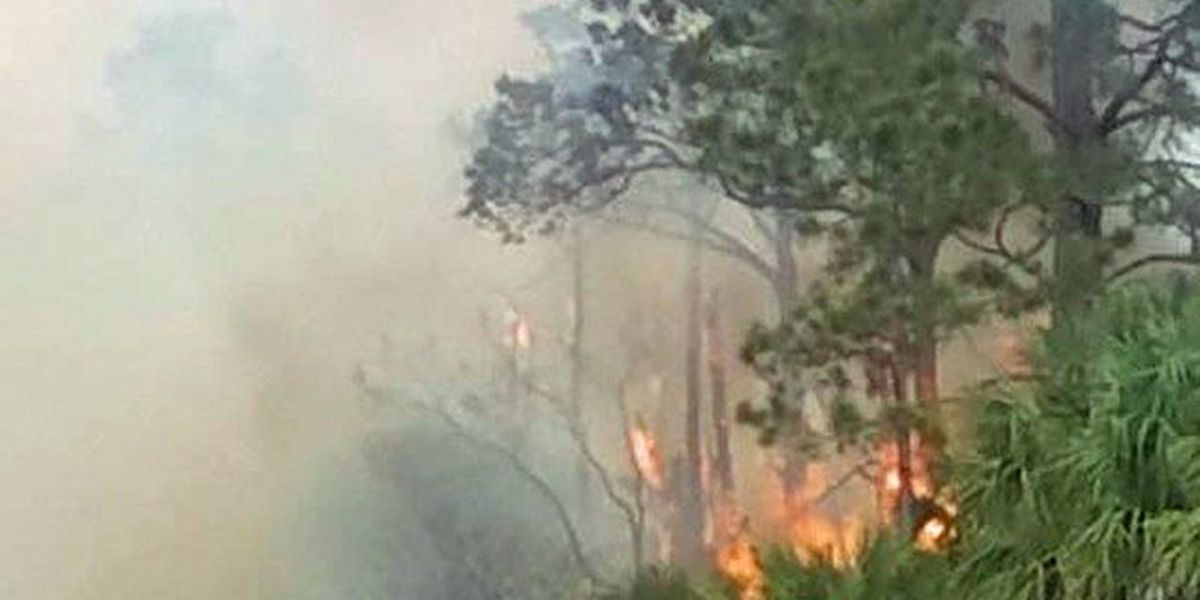 Firefighters battle St. Lucie Co. brush fire