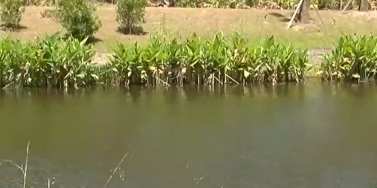 Treasure Coast waterways getting a makeover