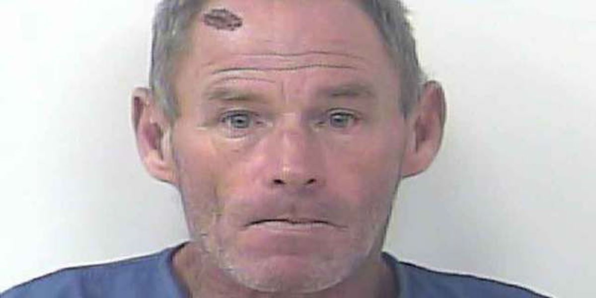 Man who robbed elderly woman gets 30 year prison sentence