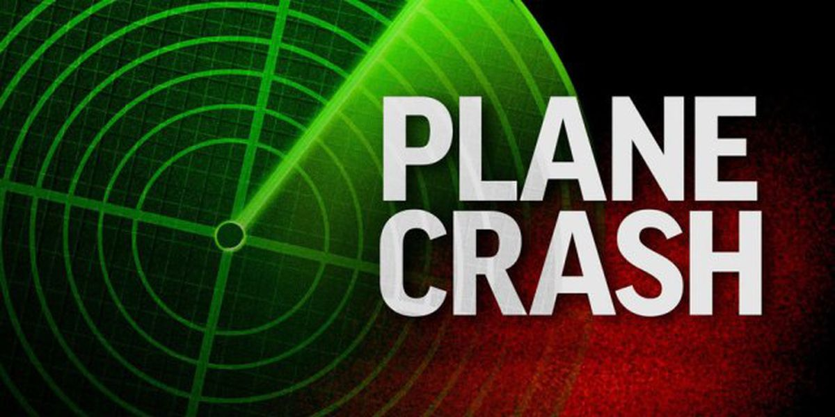 One person injured in small plane crash in Martin County