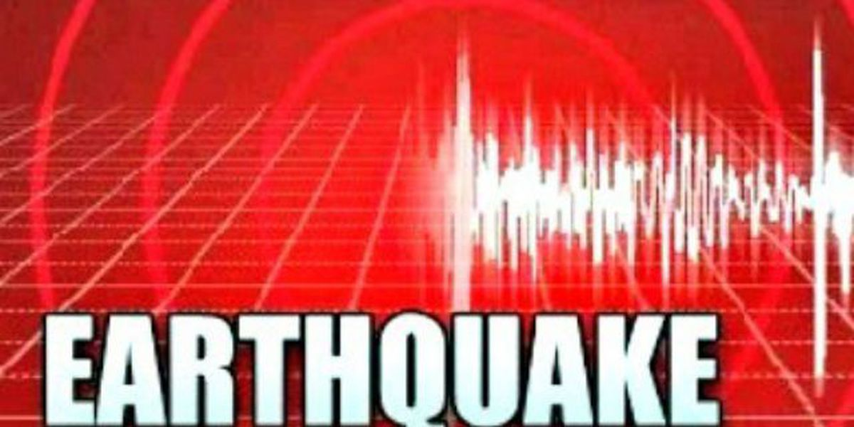 Powerful quake strikes in New Zealand